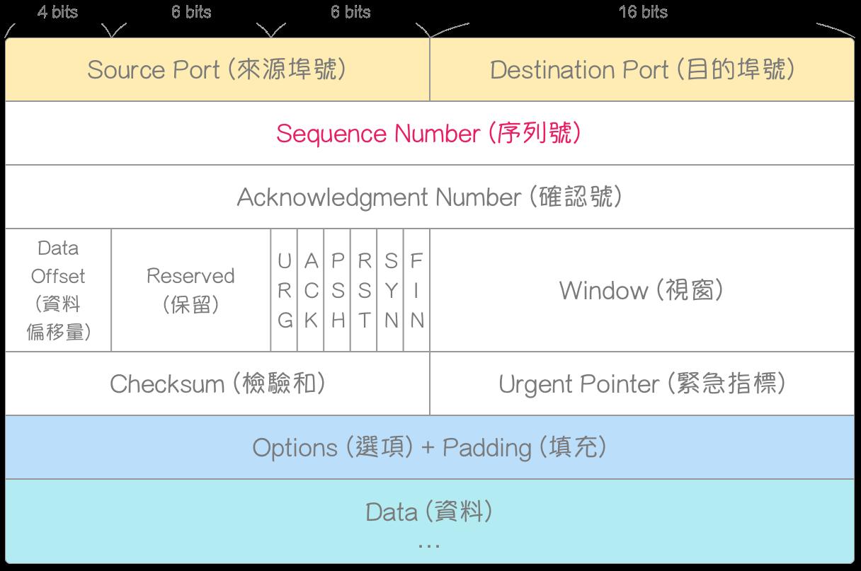 TCP-Header-Format (SEQ)